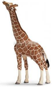 Schleich -  Žirafa pasúca sa, samec