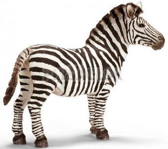 Schleich -  Zebra, samica
