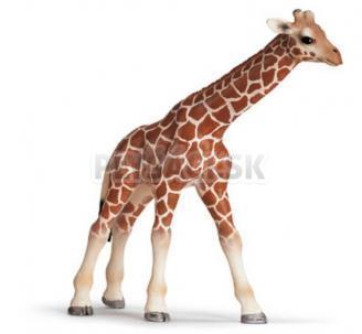 Schleich - Mláďa žirafy