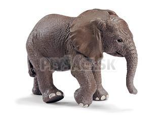 Schleich - Mláďa slona afrického