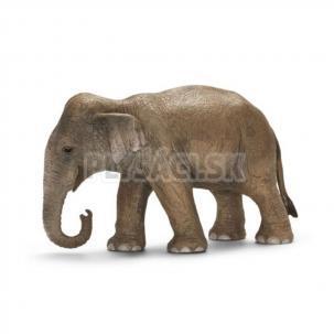 Schleich - Samica slona ázijského